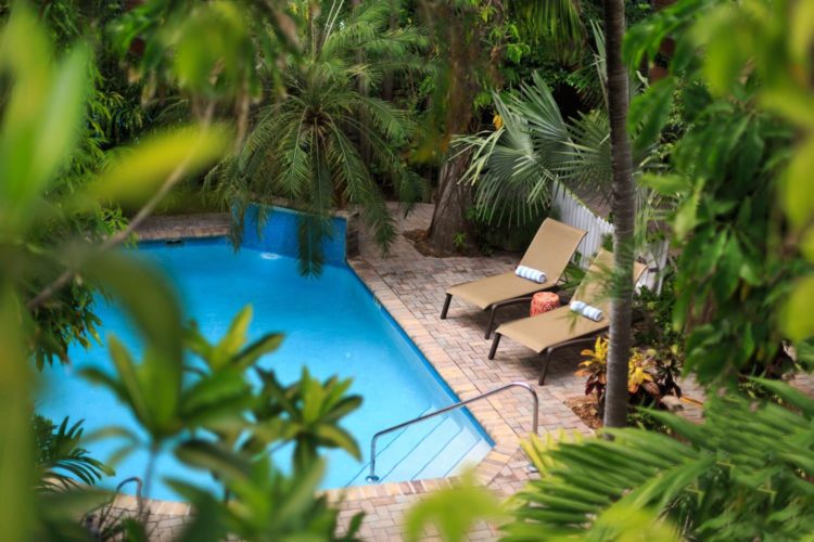 View from pool from 2nd story which has lounge chairs surrounded by dense greenery with blue and white towels