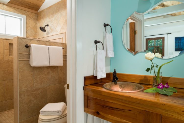 Aqua bathroom with single sink with antique brass fixture and separate room with tiled walk in shower and toilet