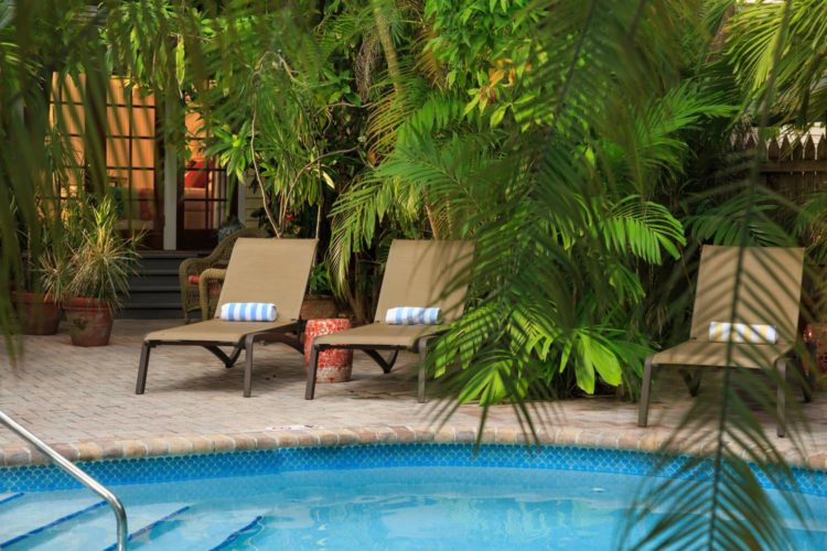 Pool surrounded by greenery and lounge chairs with blue and white towels on chairs