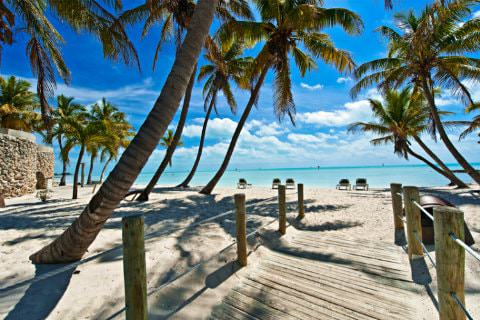 Wooden bridge with rope handrails surrounded by palm trees on beach ocean and clear blue sky in background
