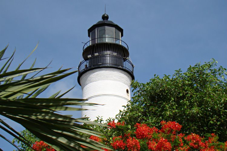 White and black lighthouse surrounded by lush tropical plants and flowers and blue skies