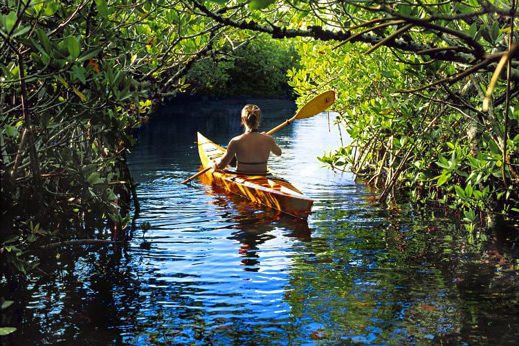 Man rowing a kayak down stream with surrounding bushes